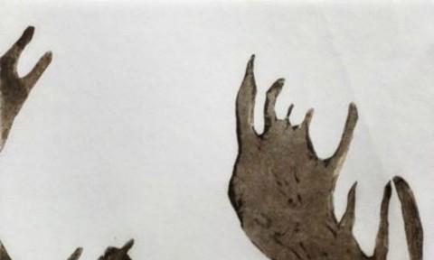A Louche Moose