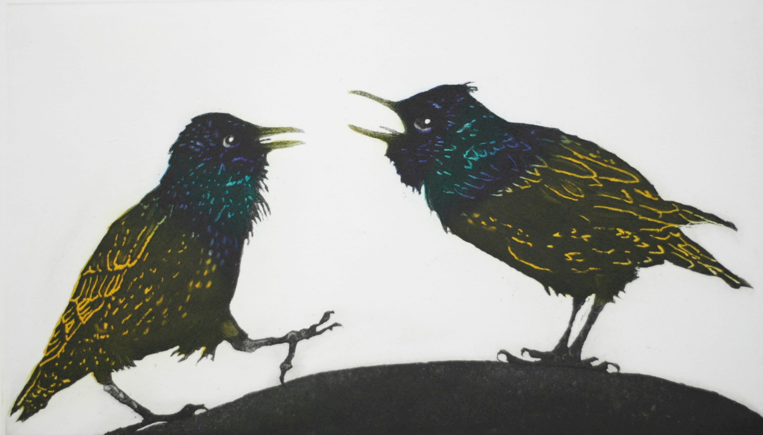 A Squabble of Starlings resize