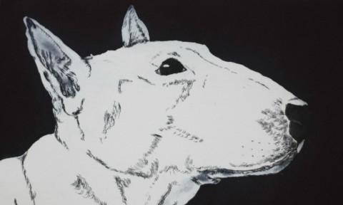 Profile of Queenie resize