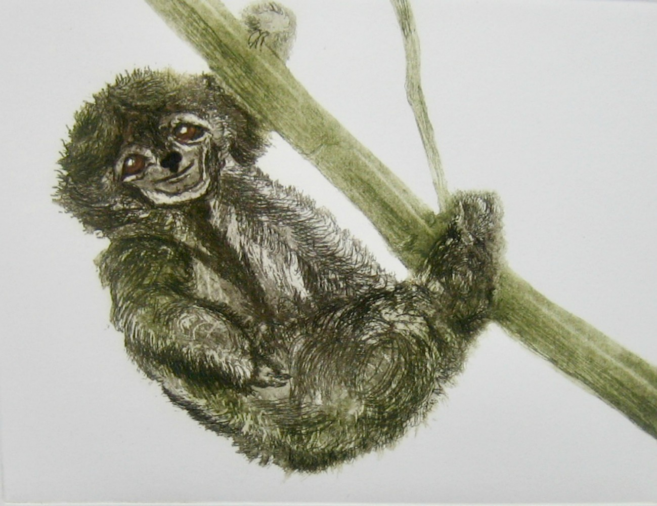 Usain Sloth resize