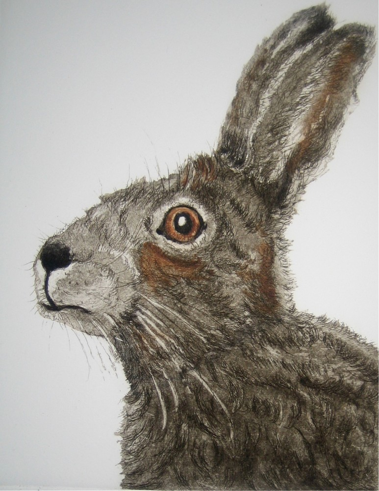 A Breath of Fresh Hare resize